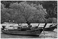 Boats, mangroves, and cliff, Rai Leh East. Krabi Province, Thailand (black and white)