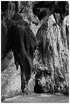 Rock climbers on limestone cliff, Railay. Krabi Province, Thailand ( black and white)