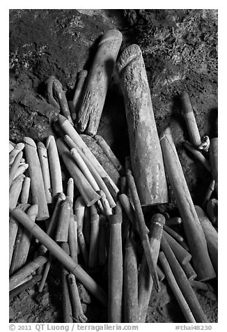 Carved wooden phalluses, Phranang cave, Rai Leh. Krabi Province, Thailand (black and white)