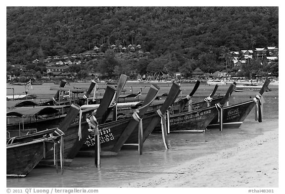 Row of long tail boats on Lo Dalam beach, Phi-Phi island. Krabi Province, Thailand (black and white)