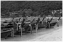 Row of long tail boats on Lo Dalam beach, Phi-Phi island. Krabi Province, Thailand ( black and white)