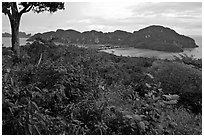Tropical vegetation, bay, and hills, Ko Phi-Phi Don. Krabi Province, Thailand ( black and white)