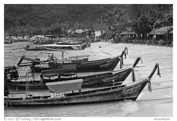 Long tail boats Tonsai beach and village, Ko Phi Phi. Krabi Province, Thailand (black and white)