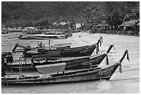 Long tail boats Tonsai beach and village, Ko Phi Phi. Krabi Province, Thailand ( black and white)