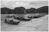 Longtail boats, Tonsai beach, Ko Phi Phi. Krabi Province, Thailand (black and white)