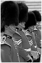 Musicians of the Guard  with tall bearskin hat and red uniforms. London, England, United Kingdom ( black and white)