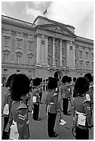 Musicians of the guard during the guard mounting in front of Buckingham Palace. London, England, United Kingdom ( black and white)
