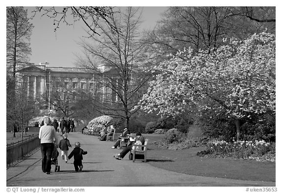 Pathway in Saint James Park in spring with Buckingham Palace in the background. London, England, United Kingdom (black and white)