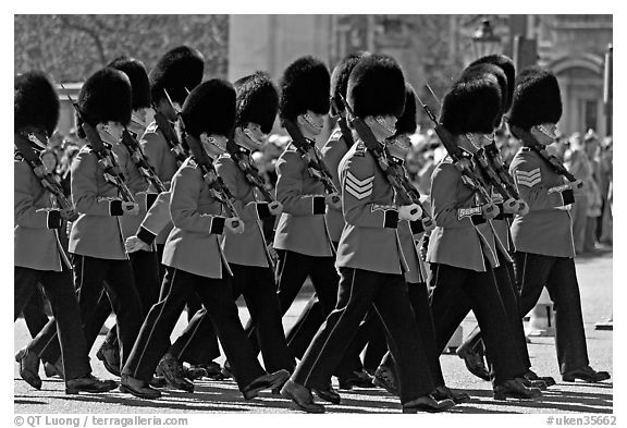 Guards with tall bearskin hats  marching near Buckingham Palace. London, England, United Kingdom (black and white)