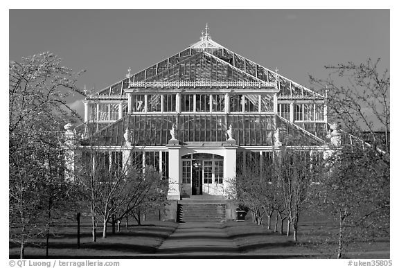 Temperate House. Kew Royal Botanical Gardens,  London, England, United Kingdom (black and white)