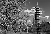 Great Pagoda designed after the Chinese Taa. Kew Royal Botanical Gardens,  London, England, United Kingdom (black and white)