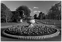 Flower circle. Kew Royal Botanical Gardens,  London, England, United Kingdom (black and white)