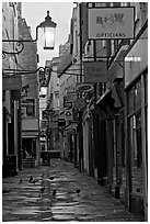 Lamps, pigeons, and narrow street. Bath, Somerset, England, United Kingdom (black and white)