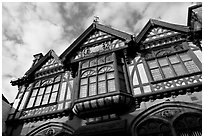 Beaney Institute. Canterbury,  Kent, England, United Kingdom (black and white)