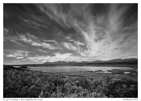 Clouds, tundra in fall color, and lake along Denali Highway. Alaska, USA (black and white)