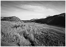 Matanuska River valley and aspens in fall color. Alaska, USA (black and white)