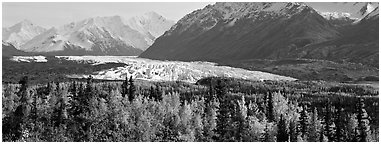 Autumn landscape with glacier. Alaska, USA (Panoramic black and white)