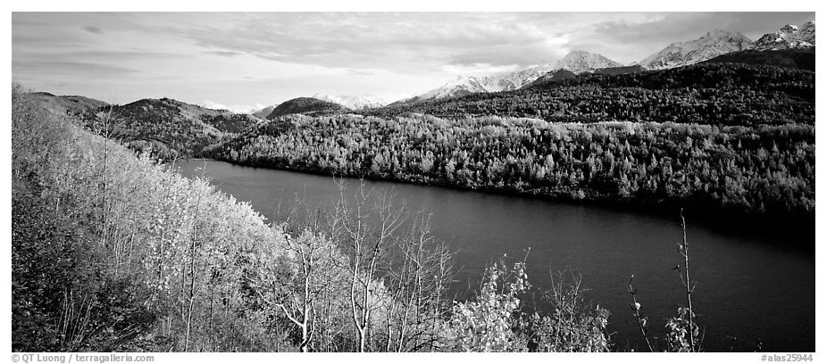 Autumn landscape with forest, lake, and mountains. Alaska, USA (black and white)