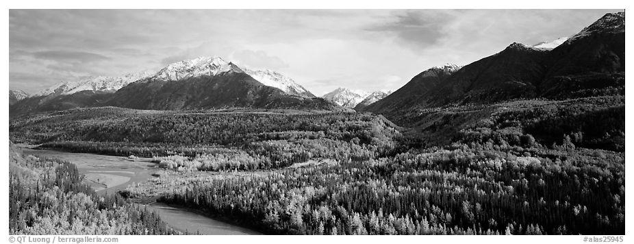 Autumn landscape with river, aspen forest, and snowy mountains. Alaska, USA (black and white)