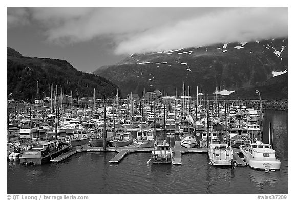 Whittier Harbour and mountains. Whittier, Alaska, USA (black and white)