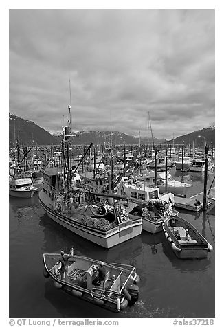 Fishing boats in harbor. Whittier, Alaska, USA (black and white)