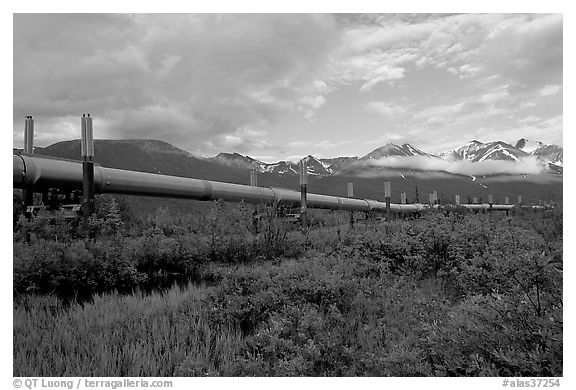 Alyeska Pipeline and mountains. Alaska, USA (black and white)