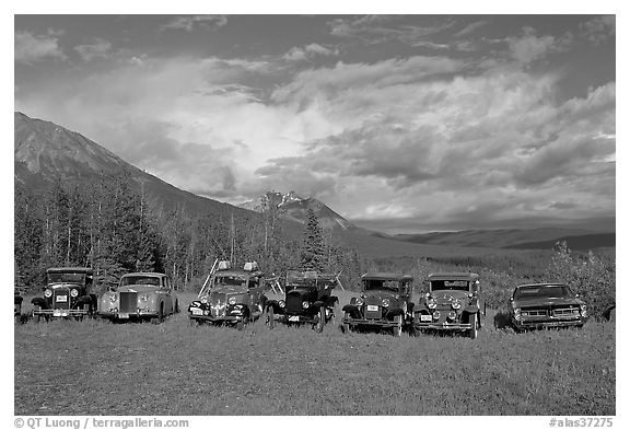 Row of classic cars lined up in meadow. McCarthy, Alaska, USA (black and white)