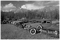 Vintage cars lined up in meadow. McCarthy, Alaska, USA (black and white)