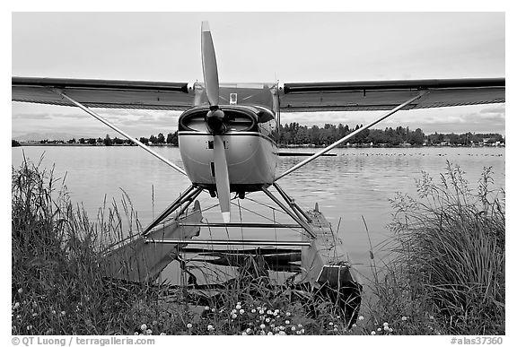 Black and White Picture/Photo: Floatplane on Lake Hood