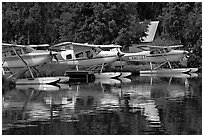 Float planes on Lake Hood, the largest float plane base in the world. Anchorage, Alaska, USA ( black and white)