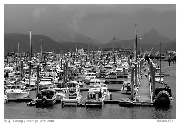 Small Boat Harbor on the Spit. Homer, Alaska, USA (black and white)