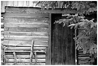 Cabin detail. Hope,  Alaska, USA ( black and white)
