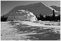 Winter landscape with igloo-shaped building. Alaska, USA ( black and white)