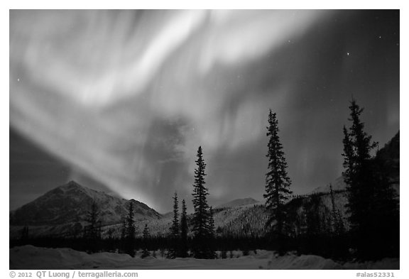 Aurora Borealis above Brooks Range in winter. Alaska, USA (black and white)