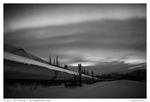 Trans Alaska Oil Pipeline at night with Northern Lights. Alaska, USA (black and white)