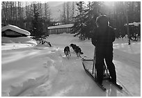 Dog sledding through village. Wiseman, Alaska, USA (black and white)