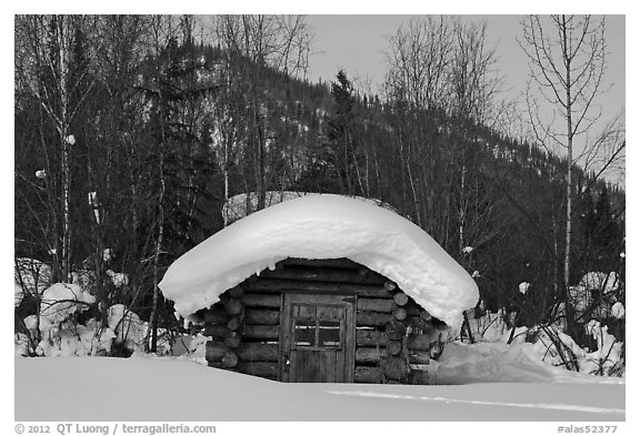 Snow-covered cabin. Wiseman, Alaska, USA (black and white)