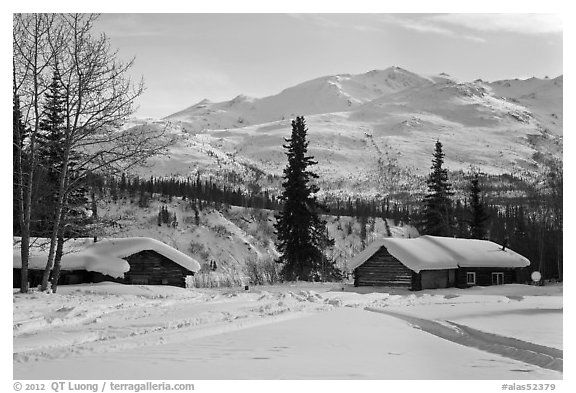 Cabins and winter landscape. Wiseman, Alaska, USA (black and white)