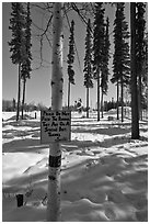 Surroundings of Santa Claus House in winter. North Pole, Alaska, USA ( black and white)