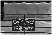 Greehouse used for vegetable production. Chena Hot Springs, Alaska, USA ( black and white)