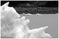 Iceberg framing Portage Lake. Alaska, USA ( black and white)