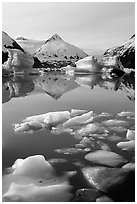 Floating ice in Portage Lake with mountain reflections. Alaska, USA ( black and white)