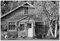Dog in front of house in Copper Center. Alaska, USA ( black and white)