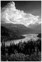 Matanuska River in summer. Alaska, USA ( black and white)