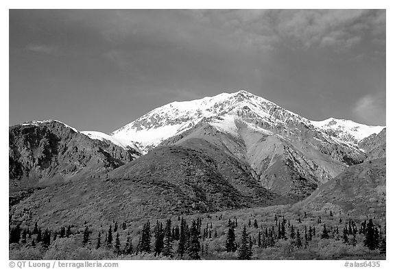 Mineralized Sheep Mountain in the Talkeetna Range. Alaska, USA (black and white)
