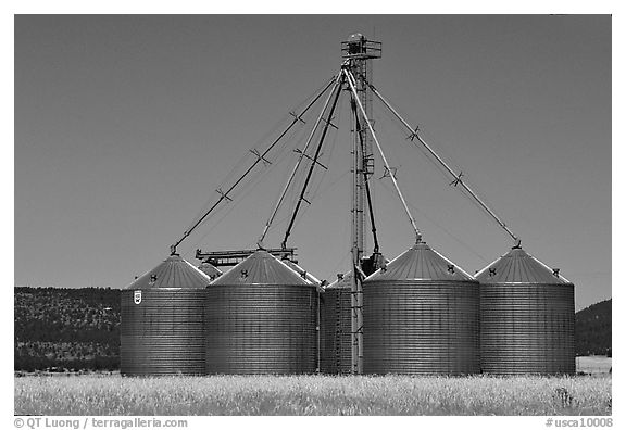 Agricultural silos. California, USA (black and white)
