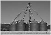Agricultural silos. California, USA ( black and white)
