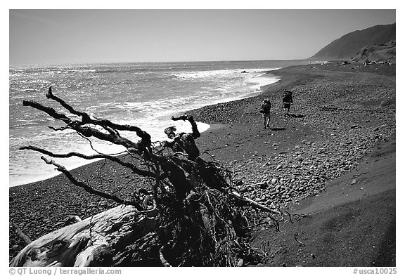 Driftwood and hikers, Lost Coast. California, USA (black and white)