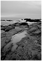 Tidal pools, sunset, Weston Beach. Point Lobos State Preserve, California, USA (black and white)