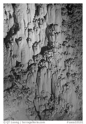 Rare cave formations, Mitchell caverns. Mojave National Preserve, California, USA (black and white)